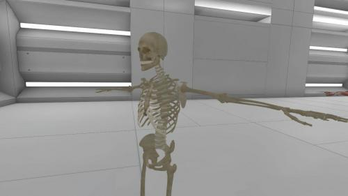 Human skeleton with bones and interactive elements in VR classroom with Acadicus